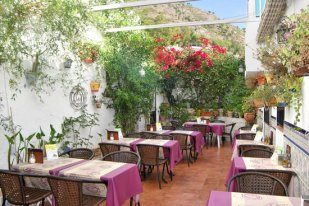 our-lovely-andaluz-patio